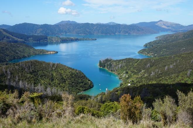 Blick über die Marlborough Sounds