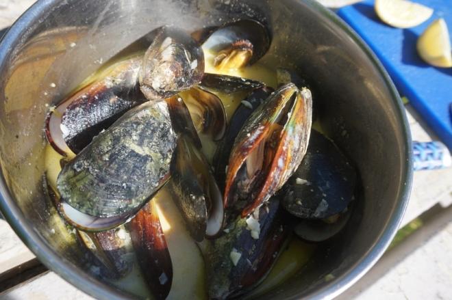 Klassiker zu Sauvignon Blanc frische Meeresfrüchte