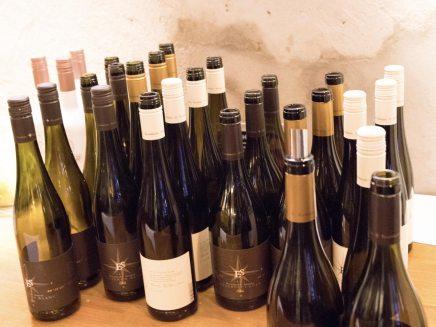Pfalz Weinprobe