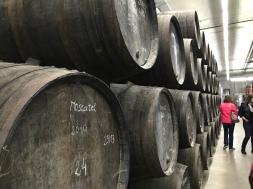 Douro-DOC wines