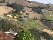 quintadagaivosa_douro_portwine_meineauslese_travel_portugal