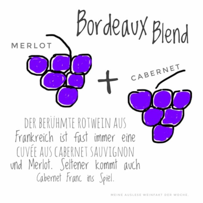 MeineAuslese_WeinFakt_Bordeauxblend