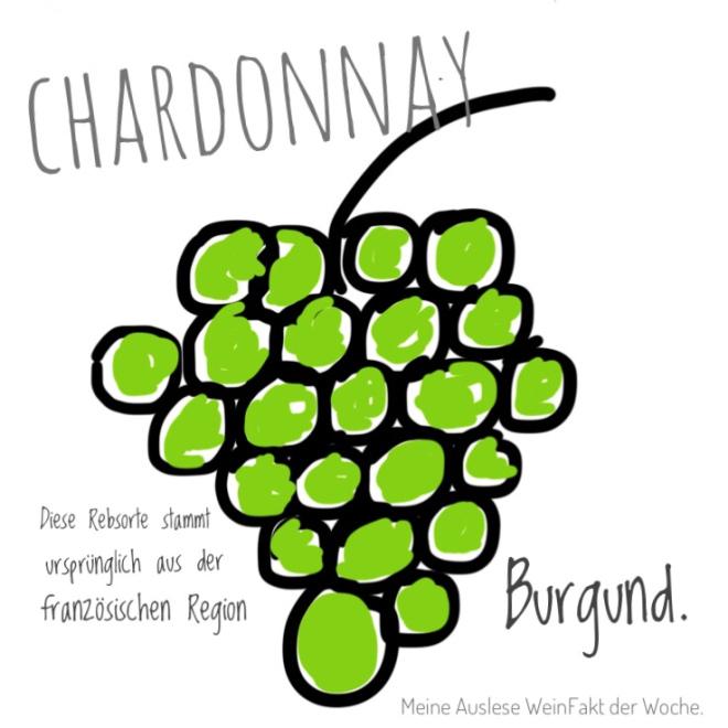 MeineAuslese_WeinFakt_Chardonnay